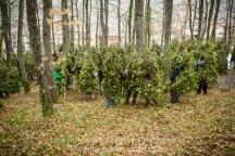 """Satriano di Lucania (PZ), sabato 1 marzo; adunata dei """"Romiti"""" nel bosco Spera"""
