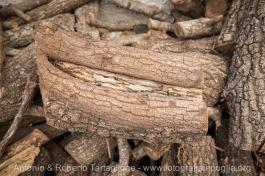 il legno del fragno conferisce, nella fase dell'affumicatura, un odore inconfondibile al Capocollo di Martina Franca (TA).