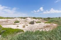 Le dune in località Marina di Lizzano (TA)