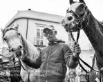 Rotondella (MT) Un cavaliere proveniente da Pisticci (MT)