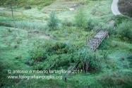 16 settembre 2016, sul cammino del pellegrinaggio da Pietragalla a Tolve