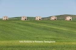 Case della Riforma Fondiaria in territorio di Poggiorsini (BA)