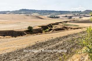 Paesaggio intorno a Santa Maria d'Irsi (Irsina - MT)